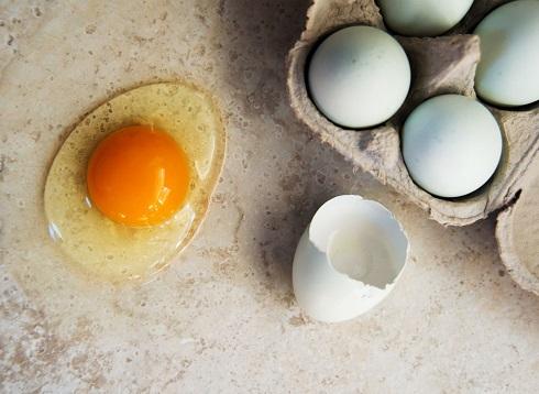 زرده تخم مرغ باعث افزایش کلسترول خون می شود