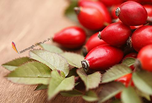 روغن میوه گل سرخ و هویج درمان آکنه و ضد پیری