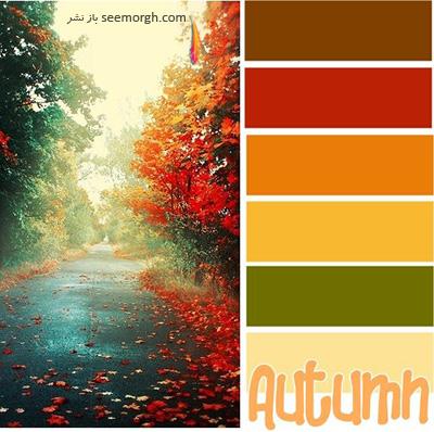 پالت رنگی شماره 5 با رنگ های تند پاییزی برای یک دکوراسیون داخلی جذاب