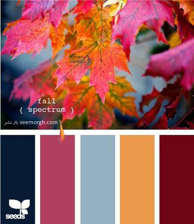پالت رنگی شماره 8 با رنگ های تند پاییزی برای یک دکوراسیون داخلی جذاب