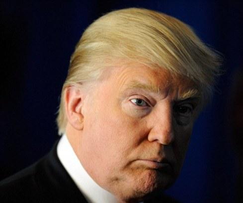 سوژه شدن شباهت پرنده چینی به دونالد ترامپ