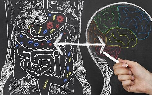7. روده شما نقش مهمی در بیماری آلزایمر ایفا می کند