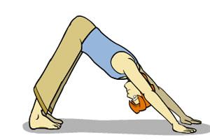 حرکات یوگا - حرکت سگ با صورت پایین ( Downward Facing Dog )