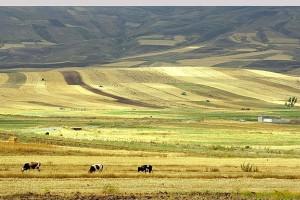 طبیعت زیبای شهرستان ورزقان + تصاویر