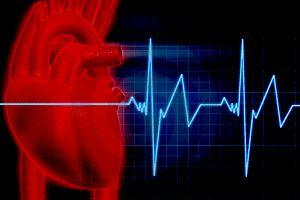 تاثیر ورزش بر سیستم قلب و عروق