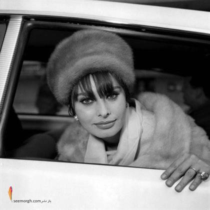 سوفیا لورن Sophia Loren زیبای ایتالیایی